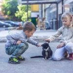 Best Pets of Kids